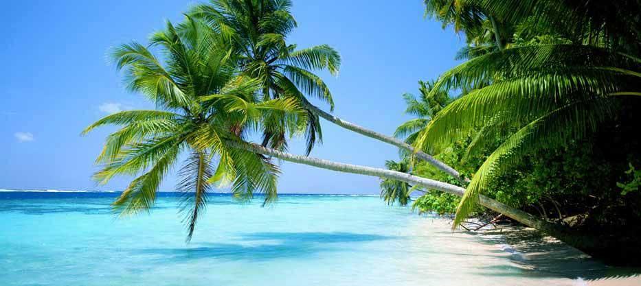 Votre guide de Voyage à Madagascar