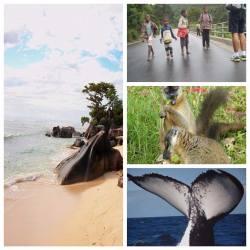 Circuit touristique pas cher à Madagascar : la légende de l'Est, plage et découverte.
