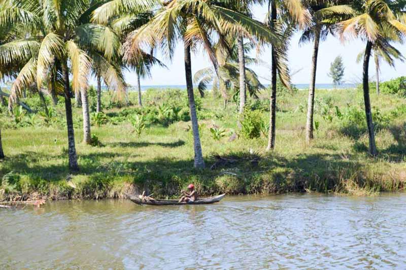 Côte malagasy avec des cocotiers et un canot en bois