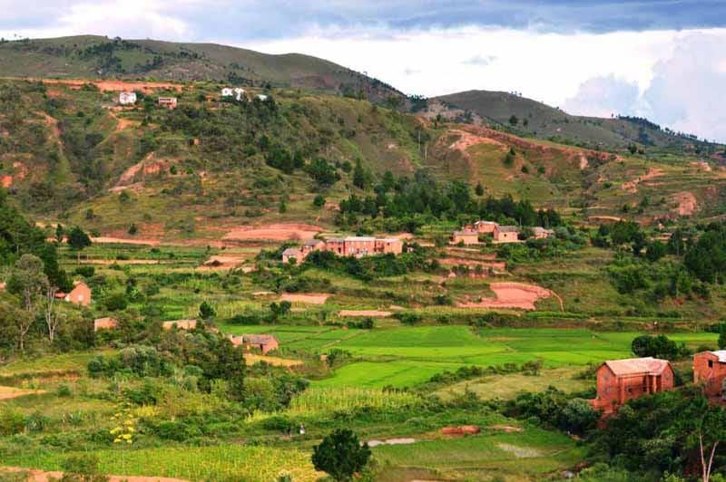 Le riz se répand dans tout Madagascar