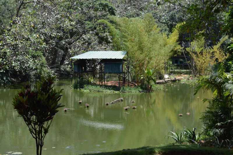 Parc Tsimbazaza