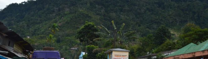 Parc de Ranomafana