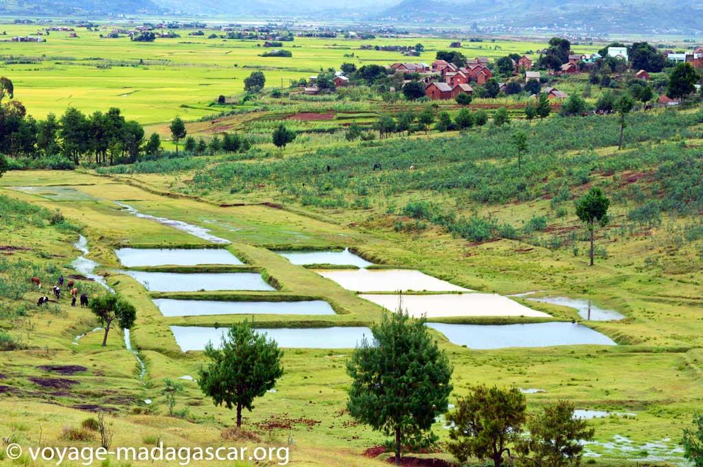 Voyage à Antsirabe: paysage sur la route d'Antsirabe