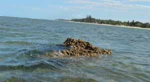 Plage de madagascar: Magnifique plage de foulpointe protegée par un recif corallien