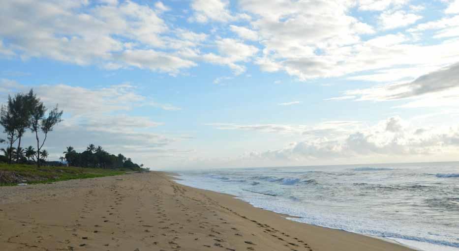 Une belle plage à admirer