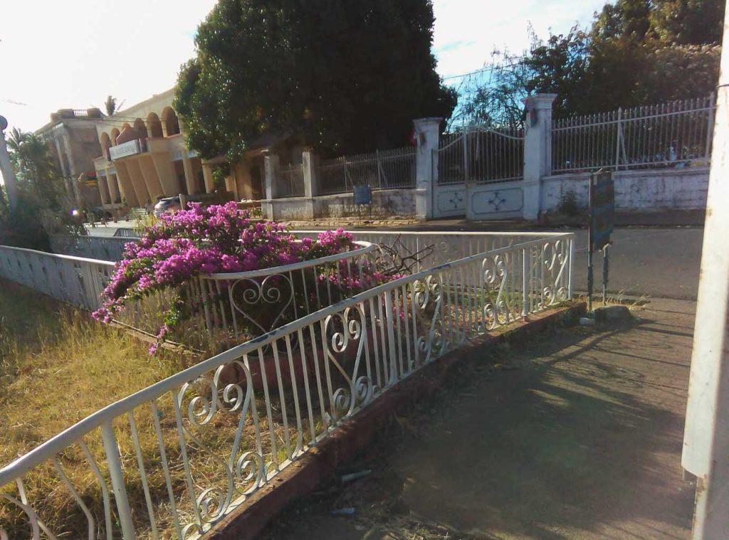 jardin diego suarez