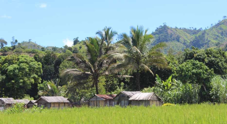 Petit village de Manantenina