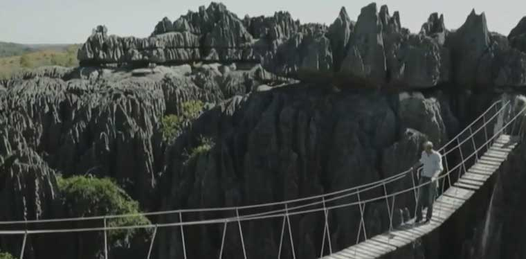 Pont au sommet des Tsingy du Bemaraha
